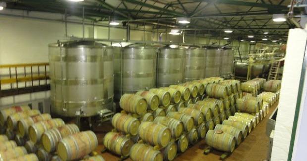 vinicola2