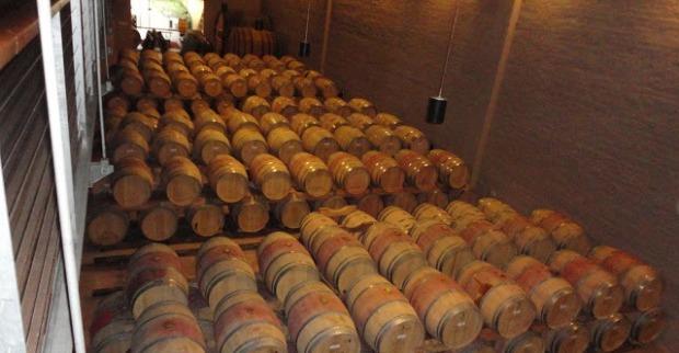 vinicola3